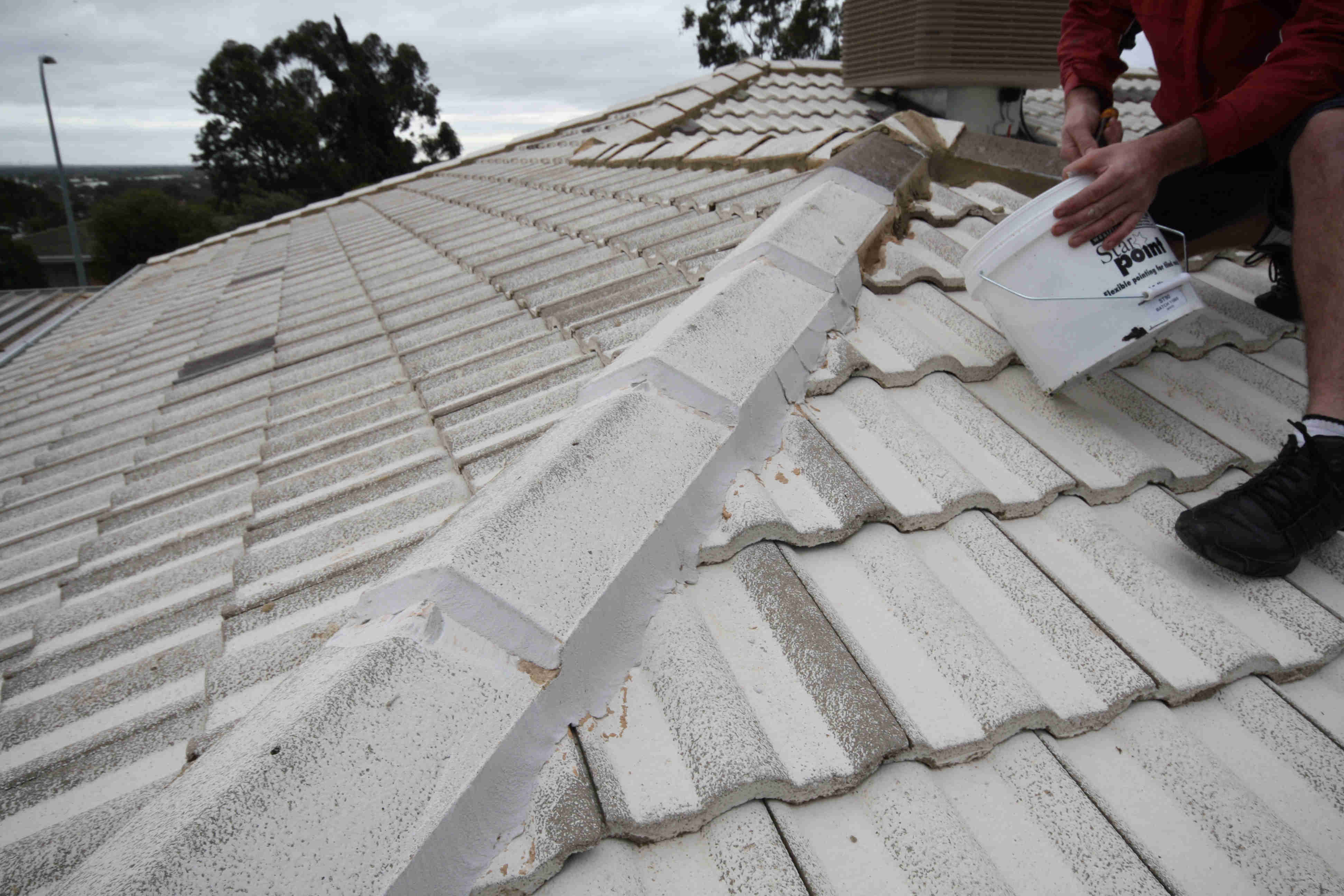 Ridge Capping Rebedding Amp Pointing